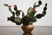 Margarita Cabrera: Space in Between - Nopal